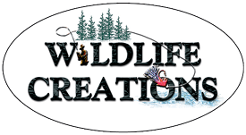 Wildlife Creations
